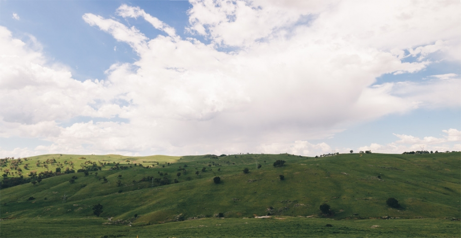 wedding-country-nsw-australia-destination-wedding-tumbarumba-batlow-canberra-photographer-videographer-vintage-documentary-farm-rustic-landscape